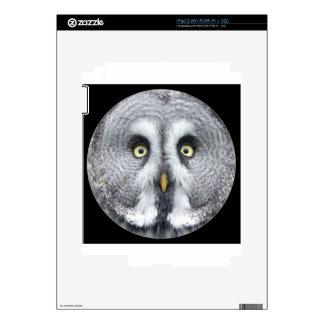 """Cute grey owl"" Decals For iPad 2"