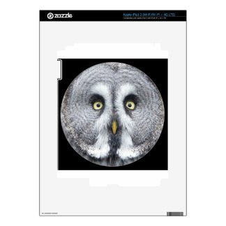 """Cute grey owl"" iPad 3 Skins"