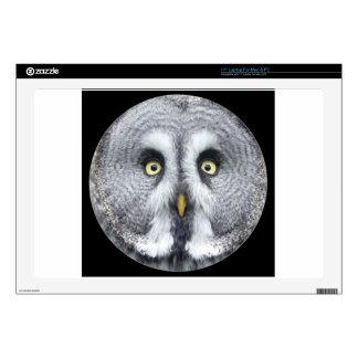 """Cute grey owl"" Laptop Decal"