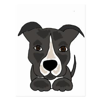 Cute Grey Pitbull Puppy Dog Postcard