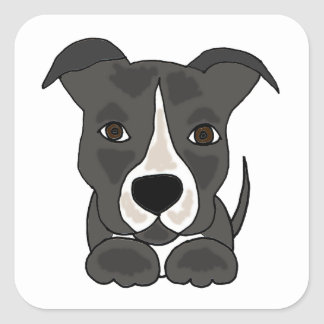 Cute Grey Pitbull Puppy Dog Square Stickers