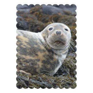Cute Grey Seal 5x7 Paper Invitation Card