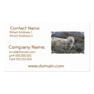 Cute Grey Seal Business Cards