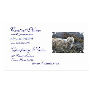 Cute Grey Seal Business Card