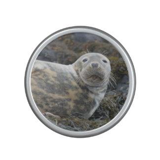 Cute Grey Seal Bluetooth Speaker