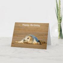 Cute Grey Seal pup - Birthday Card