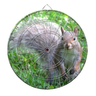 Cute Grey Squirrel Dart Board