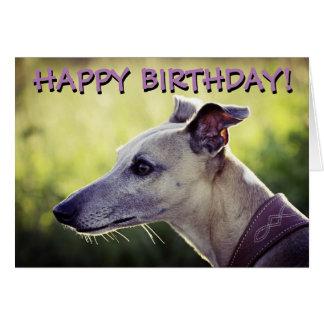 Cute greyhound customized greetings card