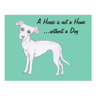 Cute Greyhound Postcard