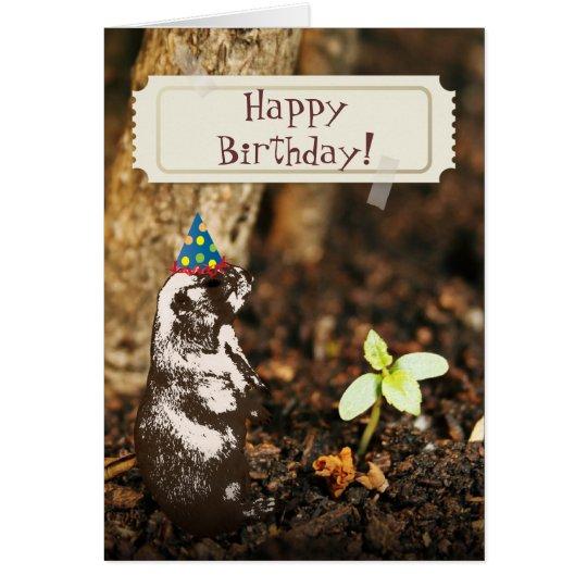 cute otter wildlife image happy birthday card  zazzle