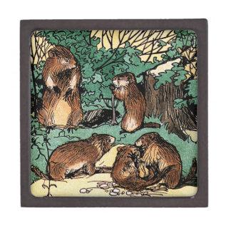 Cute Groundhog Family Vintage Illustration Gift Box