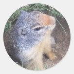 Cute Groundhog Sticker
