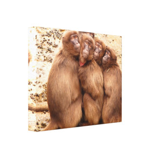 Cute Group of Monkeys Posing for the Camera Canvas