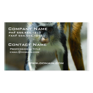 Cute Guenon Wolf's Monkey Double-Sided Standard Business Cards (Pack Of 100)