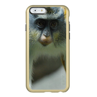 Cute Guenon Wolf's Monkey Incipio Feather® Shine iPhone 6 Case