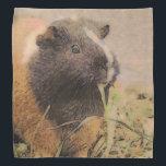 """cute Guinea pig Bandana<br><div class=""""desc"""">Guinea Pig, adorable, awesome, cute, pet, animal, Unique, amazing, </div>"""