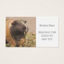 cute Guinea pig Business Card