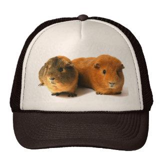 cute guinea pig trucker hat