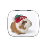 Cute Guinea Pig With Christmas Hat On White Candy Tin