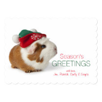 Cute Guinea Pig With Christmas Hat On White Card