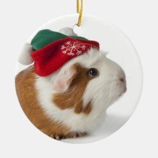 Cute Guinea Pig With Christmas Hat On White Ceramic Ornament