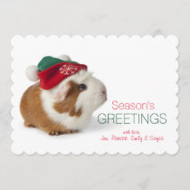 Cute Guinea Pig With Christmas Hat On White Holiday Card