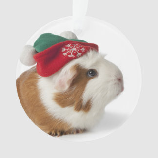 Cute Guinea Pig With Christmas Hat On White Ornament