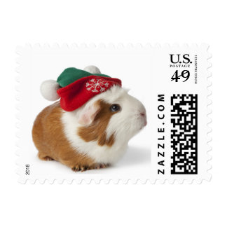 Cute Guinea Pig With Christmas Hat On White Postage Stamp