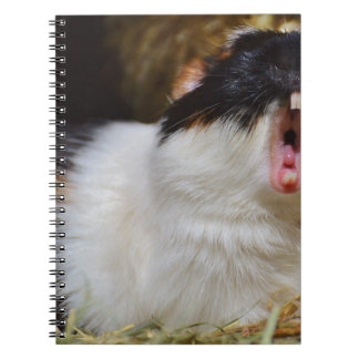 Cute Guineapig Yawning Spiral Notebook