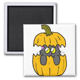 cute halloween pumpkin cat magnet