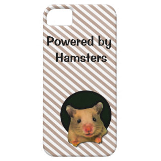 Cute Hamster and Stripes iPhone 5 Casemate iPhone SE/5/5s Case