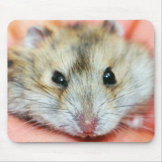 Cute Hamster Face 2 Mousepads