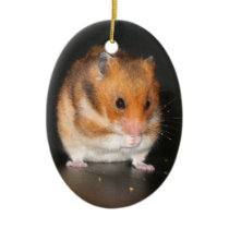 Cute Hamster ornament