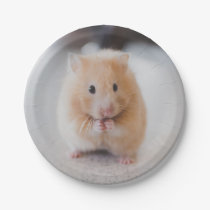 Cute hamster paper plate