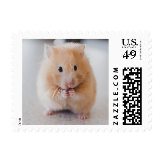 Cute Hamster postage stamps