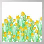 Cute hand drawn yellow watercolor daffodil poster