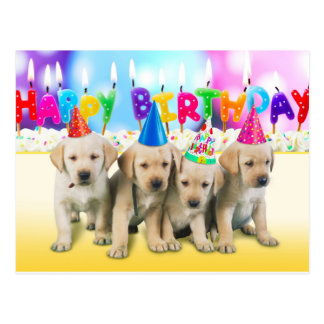 Cute Happy birthday puppies Postcard