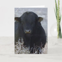 Cute Happy Father's Day Ranch Farm Bull Card
