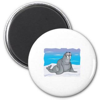 cute happy walrus fridge magnets