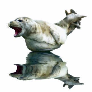 CUTE HARBOR SEAL (sculpted) Wildlife Art Gift Item Photo Sculpture Magnet