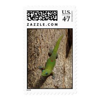 Cute Hawaiian gecko tropical postage stamps