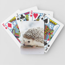 Cute Hedgehog Bicycle Playing Cards