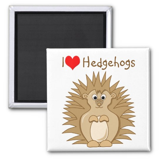 Cute Hedgehog Cartoon Animal Magnet