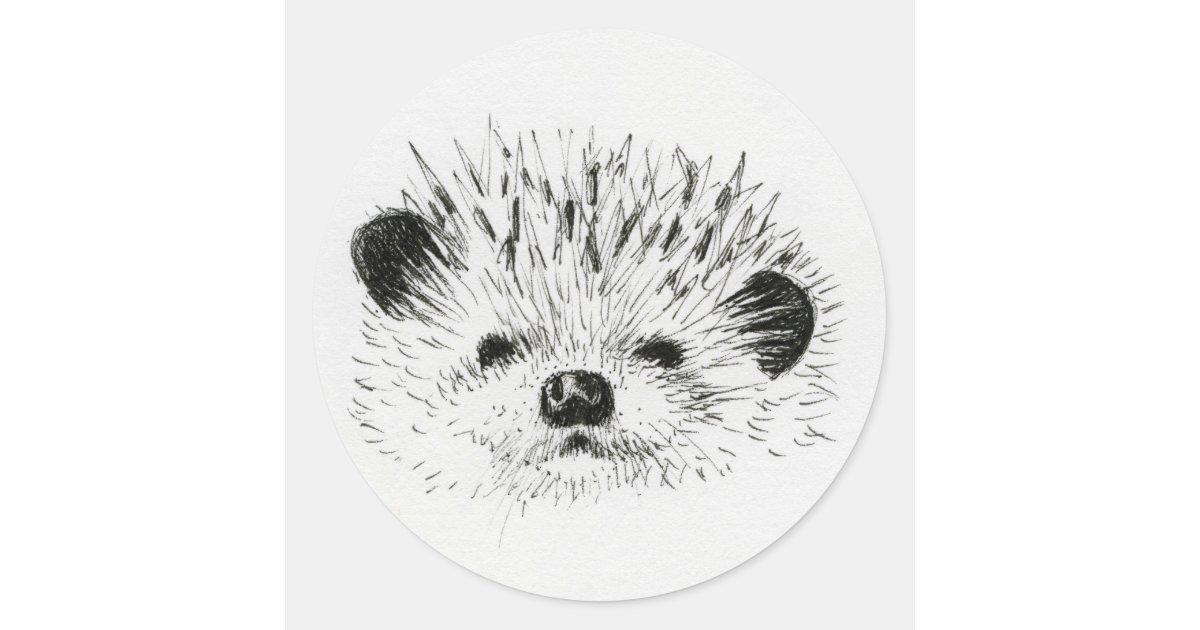 Cute Hedgehog Drawing Classic Round Sticker Zazzle