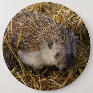 Cute Hedgehog In Stubble Field Pinback Button