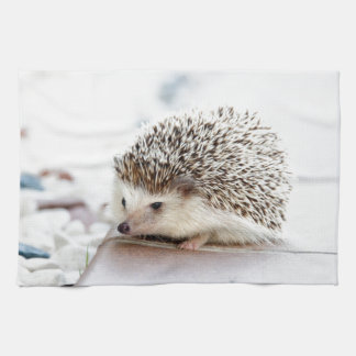 Cute Hedgehog Kitchen Towel