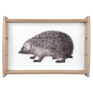 Cute Hedgehog Little Hedgie Drawing Serving Tray