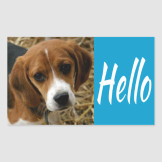 Cute Hello / Hi Beagle Puppy Dog Greeting Stickers