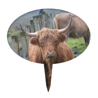 Cute Highland Cow by Fence Cake Toppers