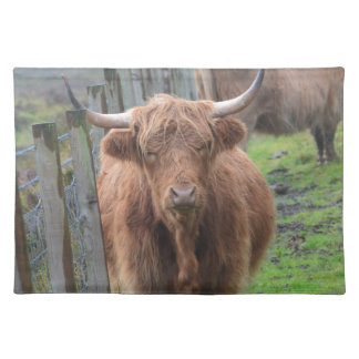 Cute Highland Cow by Fence Placemat